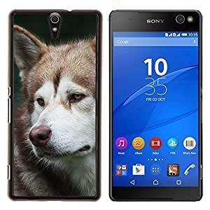 YiPhone /// Prima de resorte delgada de la cubierta del caso de Shell Armor - Alaskan Malamute Husky Hocico Sad - Sony Xperia C5 Ultra