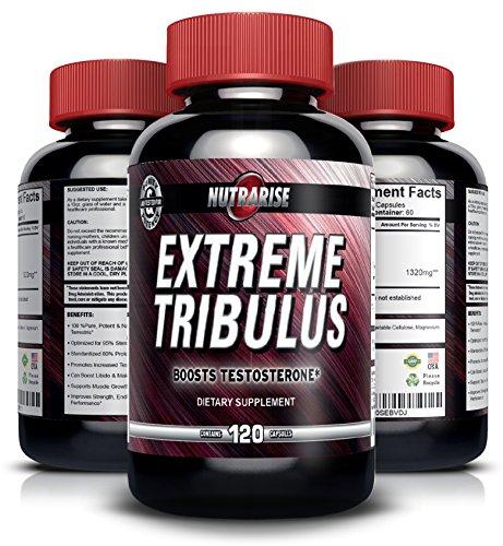 Reines Bulgarisches Tribulus Terrestris, Steigert die Libido, Sexualtrieb & Ausdauer, Fördert die Natürliche Testosteron-Produktion, 95% Saponin, 80% Protodioscin, Höchste Potenz auf Amazon, 1320mg, 120 Kapseln