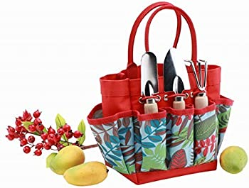 Bo Toys and Gifts Colorful Gardening Tools