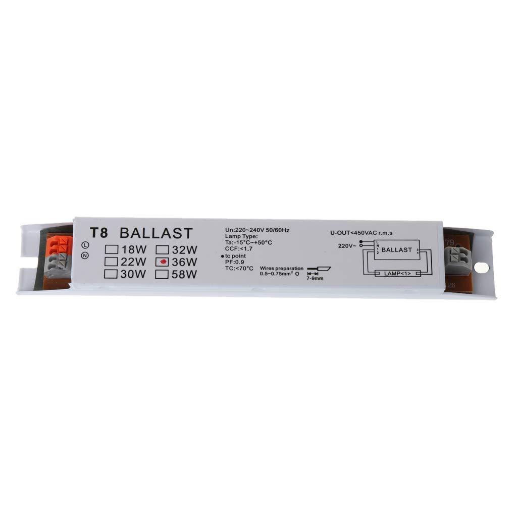LANDUM Ballasts de Lampe Fluorescente /à Ballast /électronique 220-240V AC 36W