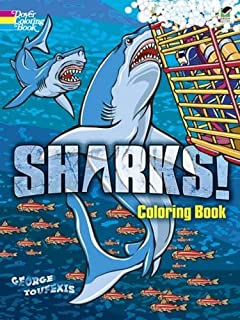 sharks coloring book dover nature coloring book