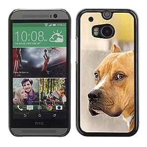 Vortex Accessory Carcasa Protectora Para HTC ONE ( M8 ) - Pit-Bull Dog Brown Golden Pet -