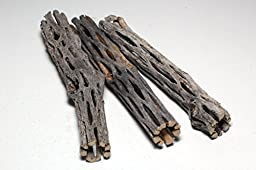 3 Pieces 5-6 inches Long Natural Cholla Wood for Aquarium Decoration by SoShrimp