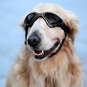 Enjoying Dog Glasses V-type UV Protection Fashion Eyewear Goggles Large - Black