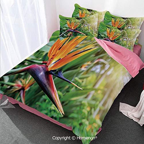 Homenon Plant Girl's Room Cover Set Full Size,Close up Image of Strelitzia Reginae Bird of Paradise Flower,Decorative 3 Piece Bedding Set with 2 Pillow Shams Multicolor