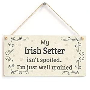 "Meijiafei My Irish Setter Isn't Spoiled I'm Just Well Trained - Beautiful Shabby Chic Style Home Accessory Gift Sign for Irish Setter Dog Owners 10"" x 5"" 13"