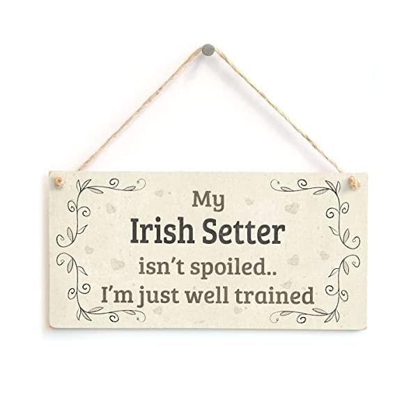 "Meijiafei My Irish Setter Isn't Spoiled I'm Just Well Trained - Beautiful Shabby Chic Style Home Accessory Gift Sign for Irish Setter Dog Owners 10"" x 5"" 1"