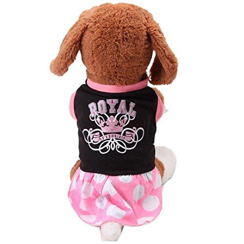 DDLBiz Stylish Summer Skirts Clothes