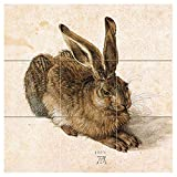 Hare by Albrecht Dürer Tile Mural Kitchen Bathroom Wall Backsplash Behind Stove Range Sink Splashback 3x3 12'' Ceramic, Matte