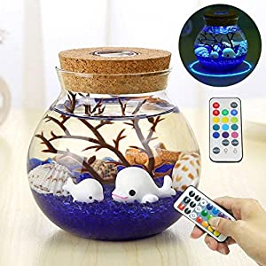 Pawaca Micro-landscape Bottle Lights - Creative Stylish Romantic DIY Ecological Glass Luminous Aquarium Bottle Lights with Remote Control for Home Decor,Valentine's Day, Christmas Gift