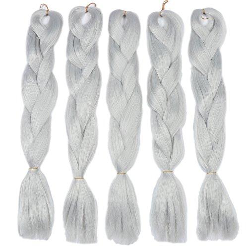 Fani Braiding Hair Kanekalon Crochet Braids Hair Silver Grey Color Braiding Hair Extensions Synthetic High Temperature Fiber 24Inch 5Pcs/Lot 100g/Pc ()