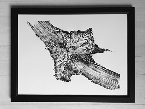 Tree Roots. Yellowstone Madison River. Original woodblock tree ring print 18x24 inches