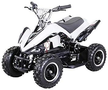 Actionbikes Motors Mini Elektro Kinder Racer 800 Watt Atv Pocket
