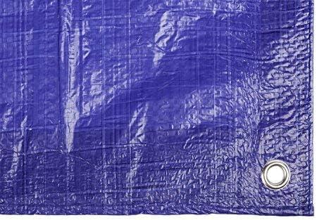 Toldo reforzado gramaje 90 grs, 5 x 8 m, color azul - Catral 560114