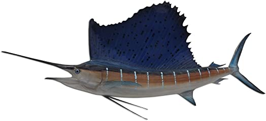 71 Inch Atlantic Sailfish Half Sided Fish Mount Replica
