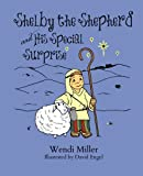 img - for Shelby the Shepherd and His Special Surprise book / textbook / text book