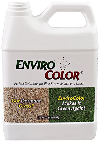 1000-sq-ft-4evergreen-grass-and-turf-paint