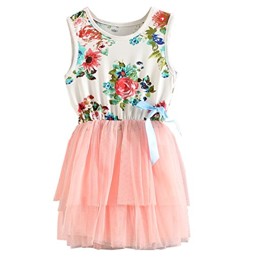 Csbks 1 2 3 4 5 Years Kid Girls Cute Floral Sundress Tulle Tutu Skirt Tank Dress 4T (Pretty Floral Skirt)