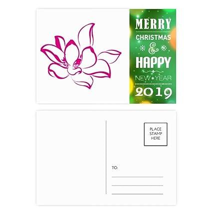 Amazoncom Plant Flower Pink Lotus Flower 2019 New Year Postcard
