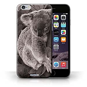 KOBALT? Protective Hard Back Phone Case / Cover for iphone 6 4.7+/6 4.7 | Koala Bear Design | Mono Zoo Animals Collection