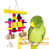 Bwogue Bird Toy with Bell, Natural Chew Toy for...