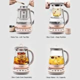 Buydeem K2693 Health-Care Beverage Tea Maker and
