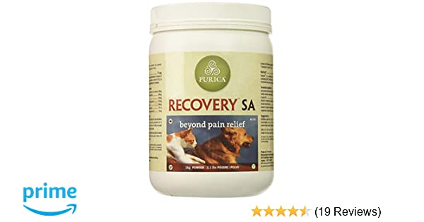 Amazon.com : Recovery SA Powder 2.2 lb : Pet Supplements And Vitamins : Pet Supplies