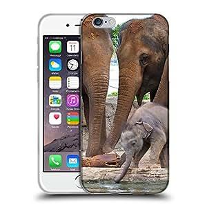 "Super Galaxy Coque de Protection TPU Silicone Case pour // V00000046 Elefante // Apple iPhone 6 6S 6G PLUS 5.5"""