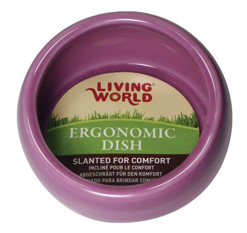 Petware Dish - Living World Ergonomic Dish, Pink, Large