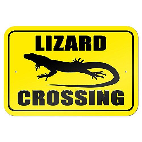 Lizard Crossing 9