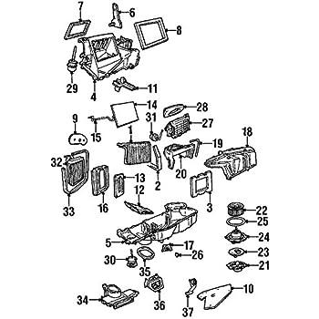 Amazon Com Genuine Ford 2l2z 19e616 Ba Ac Motor Assembly Automotive
