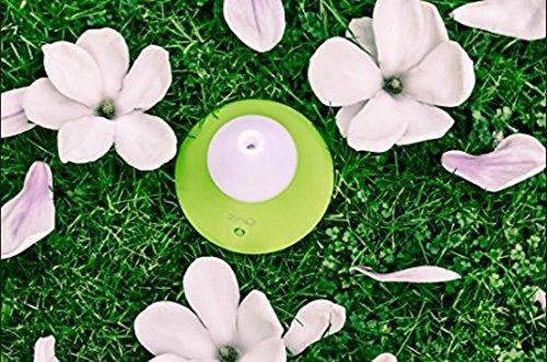 Zaq Noor green Essential Oil Diffuser
