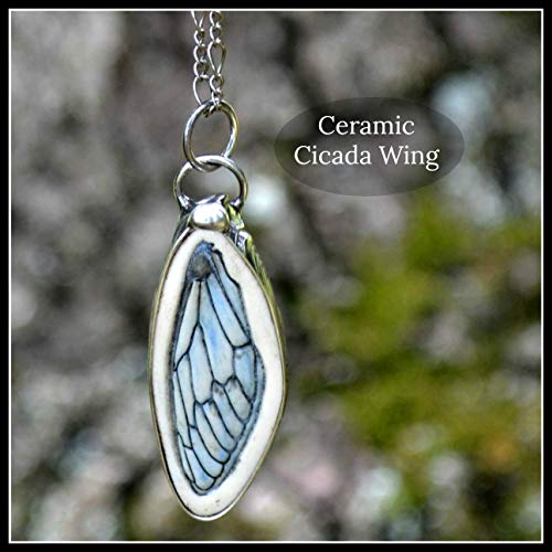 (Cicada Wing Necklace, Handmade Bug Jewelry, Long Necklace for Women, Gift for Nature Lover 2801f)