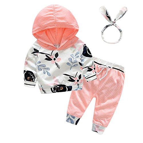 Dot Jumper Set - Tem Doger 3Pcs Baby Girls Cute Pink Floral Hoodie Sweatshirt+Polka Dots Pants Outfits Set (80/6-12 Months)