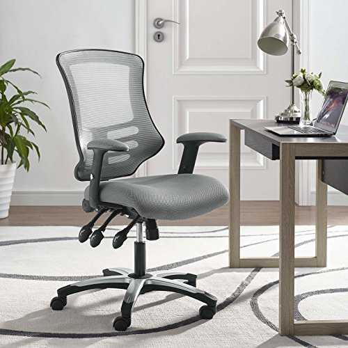 Modway  Calibrate Mesh Office Chair, Gray
