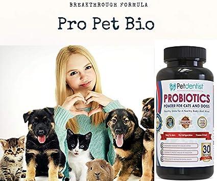 Petdentist perro probiótico en polvo para perros y gatos con ...