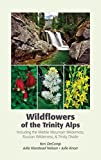 Search : Wildflowers of the Trinity Alps
