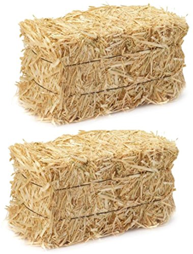 (LJIF Thanksgiving Fall Harvest Autumn Fall Decorations, 3.5 in, 4 in. Straw Bales, 2 1/2-Inch-by-1 1/4-Inch-1-Inch Bale Bundle of 2)
