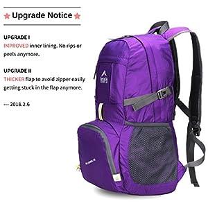 Venture Pal Lightweight Packable Durable Travel Hiking Backpack Daypack (Purple)