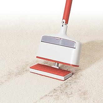 Carpet Rake Image