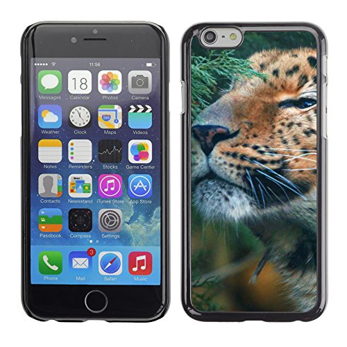 Premio Sottile Slim Cassa Custodia Case Cover Shell // V00003187 mignon amur leopard // Apple iPhone 6 6S 6G 4.7""