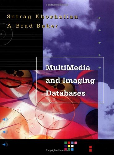 Multimedia Database Ebook
