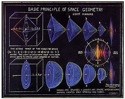spese geometra