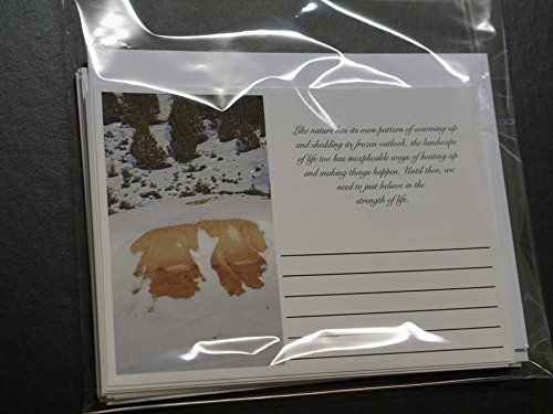 Purpose & Strength Greeting Post Cards with Additional Envelopes- Assorted Pack of 7