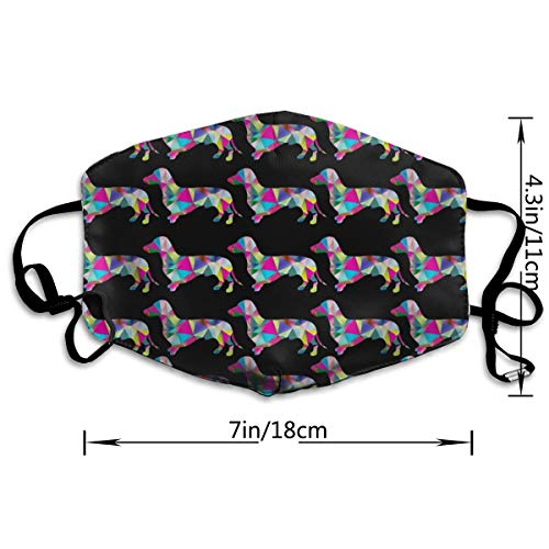 NEWINESS Premium Men Women Breathable Indoor Outdoor Half Face Mask - Adjustable Dustproof Anti Pollution Pollen Safety Medical Mouth Mask Prismatic Triangular Dachshund