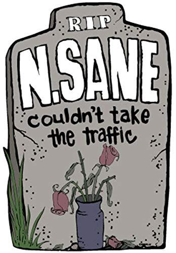 Halloween Gravestone R.I.P. N. Sane Magnet for Cars,