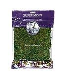 """SuperMoss (22420) InstantGreen Moss Mat, Fresh Green, 18 x 16"""""""""""