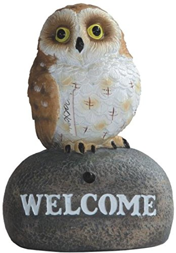 """StealStreet ss-g-54284, 5.5 """"marrón búho Welcome Sign Sensor de"""