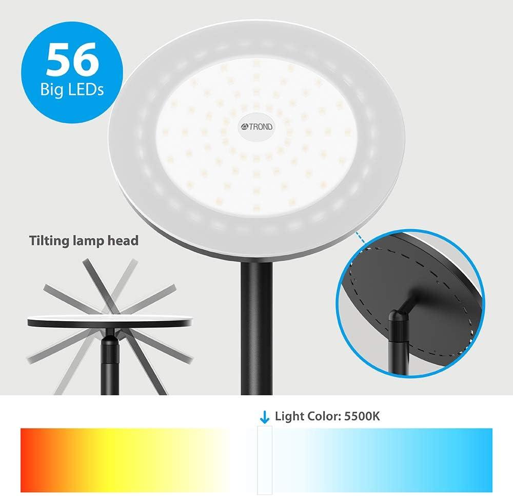 TROND LED Fackel Stehlampe dimmbar 30W, 5500K nat/ürliches Tageslicht, max. 4200 Lumen, 71 Zoll, 30 Minuten Timer, Nullverz/ögerung, mit Wandschalter, f/ür Wohnzimmer, Schlafzimmer, B/üro Modern Schwarz