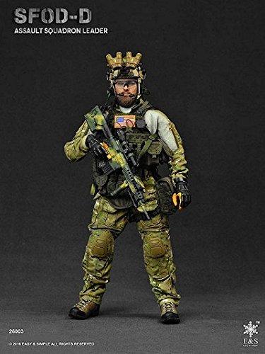 SFOD-D アサルト スクァドロン リーダー 1/6 アクションフィギュアの商品画像